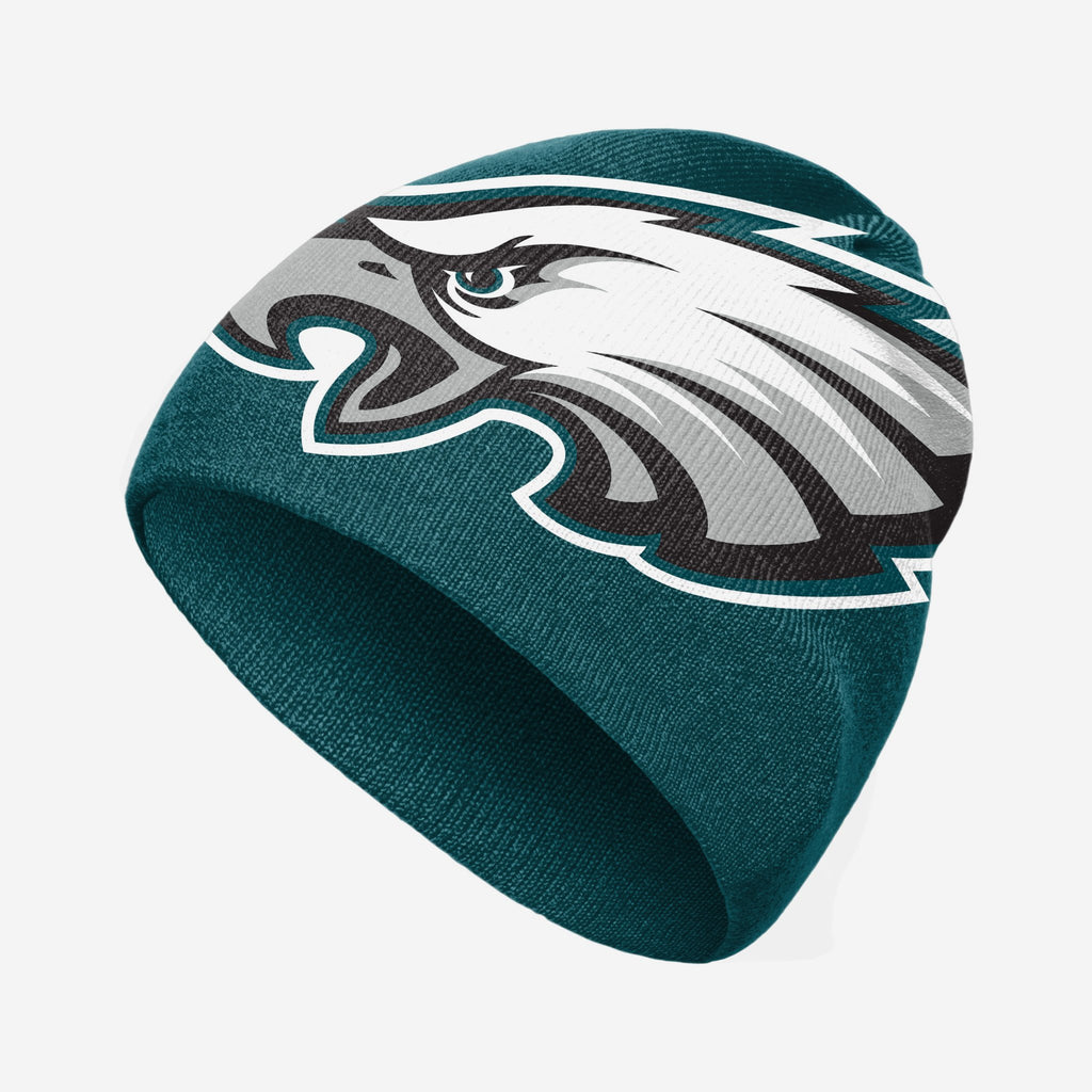 Philadelphia Eagles Big Logo Skullcap Beanie