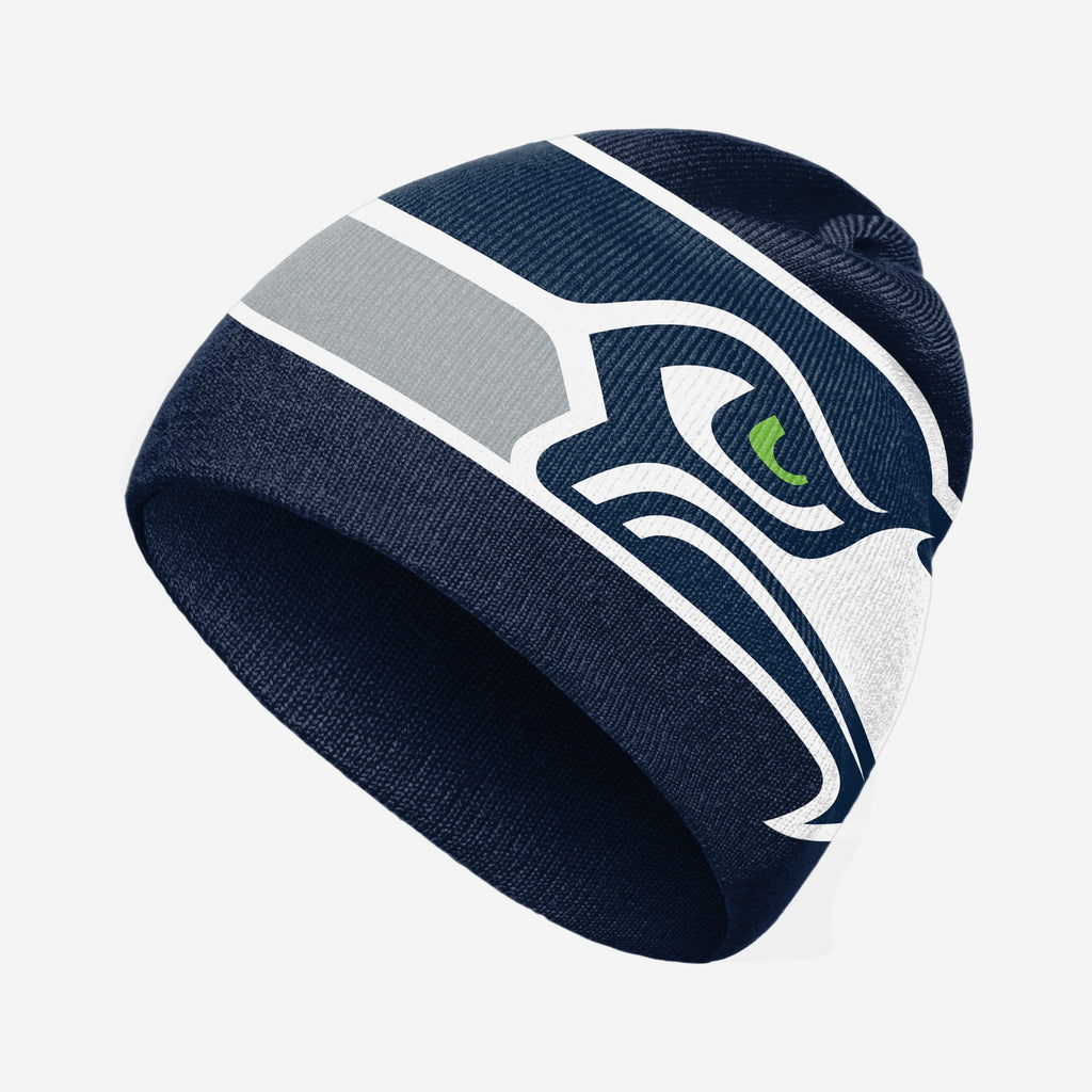 Seattle Seahawks Big Logo Skullcap Beanie