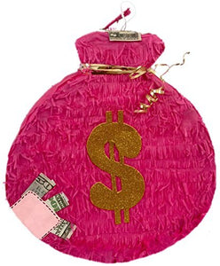Pink Money Bag Theme Pinata