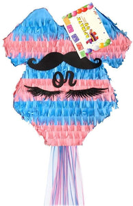 Pink & Blue Gender Reveal Pinata Baby Theme Baby Onesie Theme Staches or Lashes