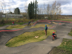 Wildwood pumptrack Cleary hedgehog kids mountain bike