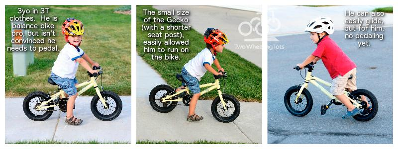 Two Wheeling Tots - The Cleary Gecko review