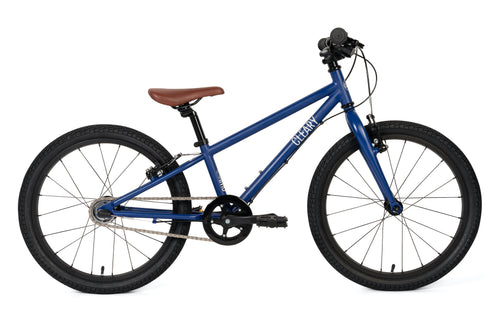 Blue Kids Bike 20