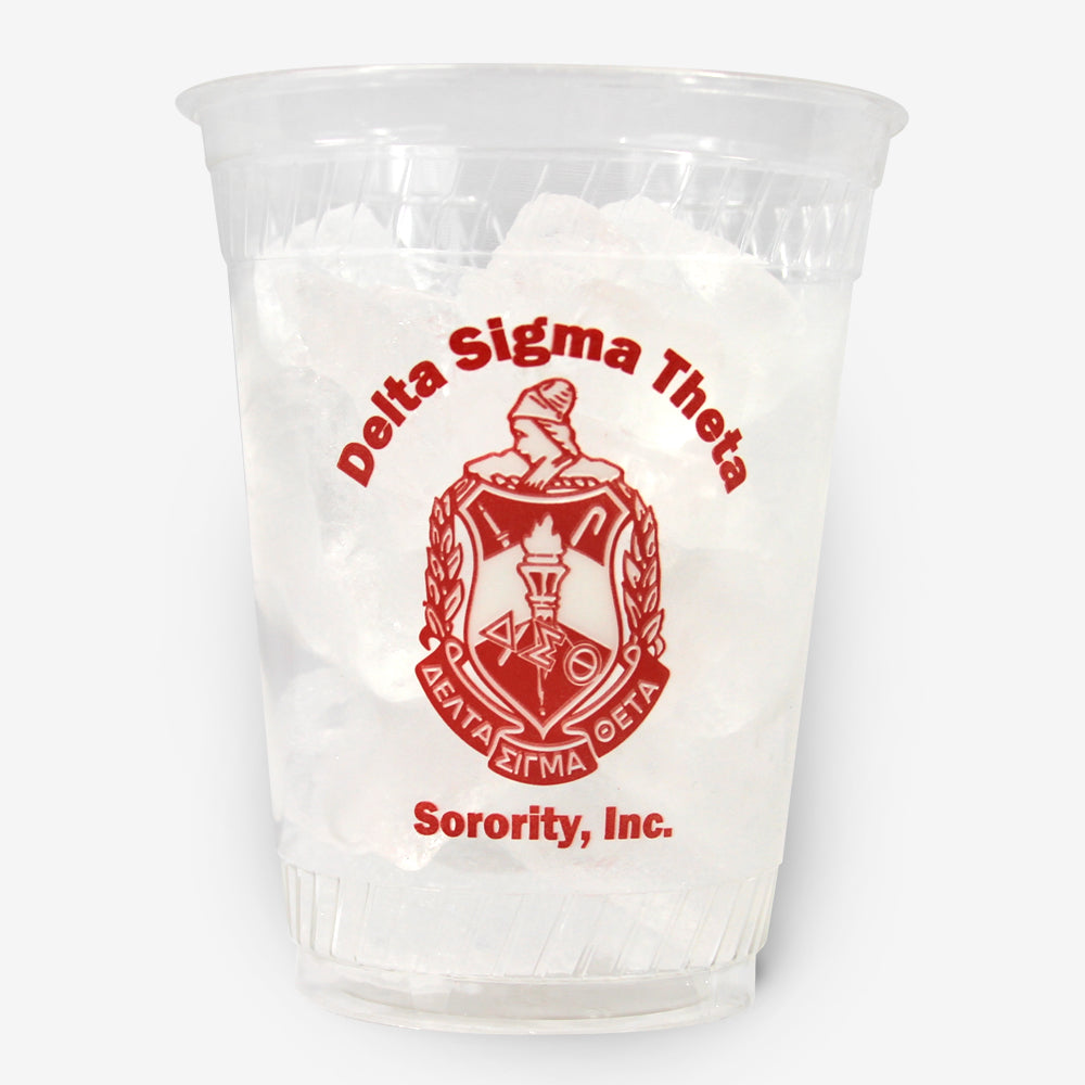 DST 16 oz Clear Plastic Cup (24ct)