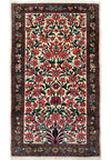 "2'5"" x 4'3"" Botanical Persian Sarough Rug"