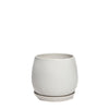 Egg Pot - Matt White