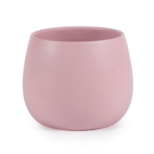 Orchid Pot Blush