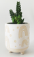 Elemental Planter Rainbow White & Sand Small