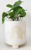 Elemental Rainbow Planter White & Sand Medium