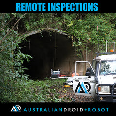 Remote Inspection