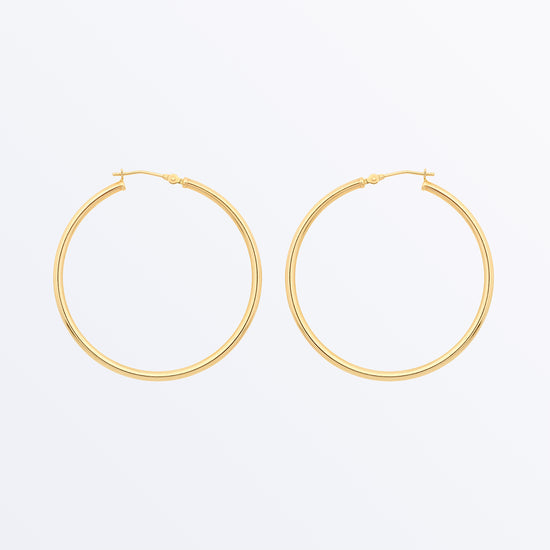 Ana Luisa Earrings Solid Gold Hoops 14k Gold Hoop Earrings XL Hoops