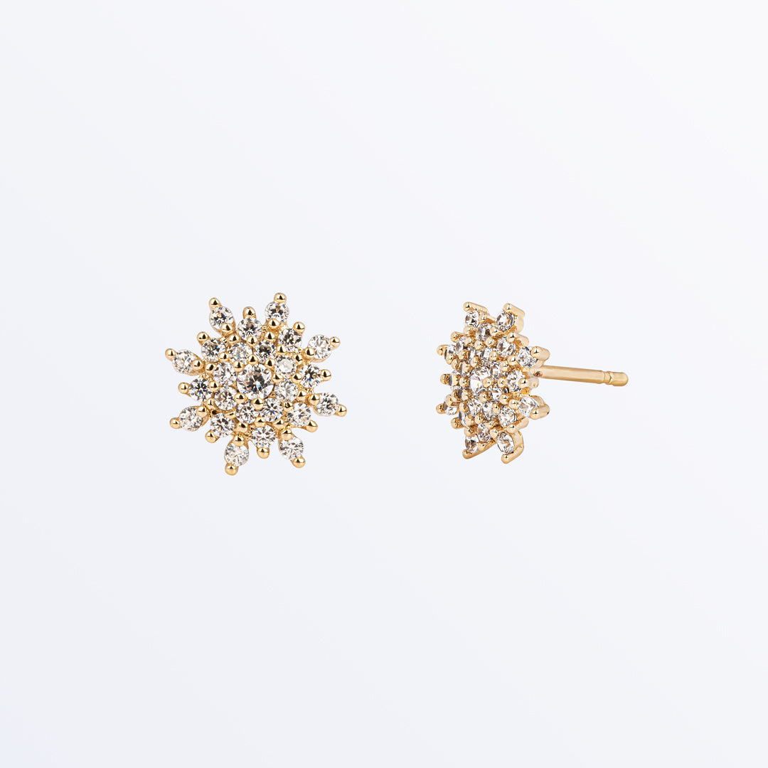Ana Luisa Earrings Stud Earrings Star Earrings Raya Gold