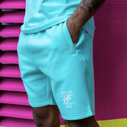 Heritage logo sweat shorts in mint green