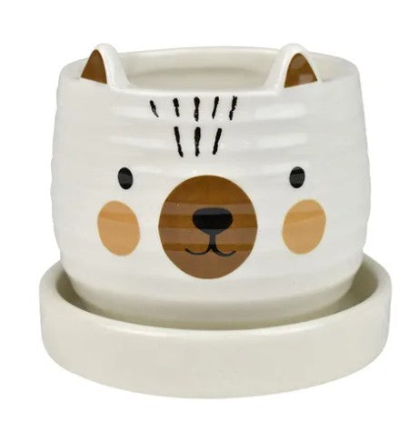 Blake Bear Pot With Saucer