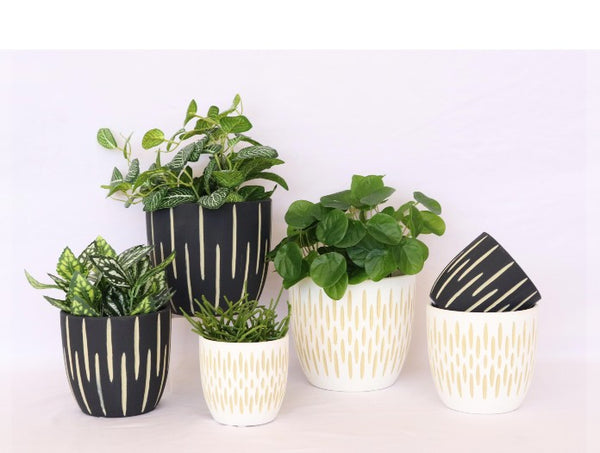 Dash Planter White Sml and Medium