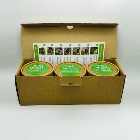 GROW @ HOME Microgreen Kits
