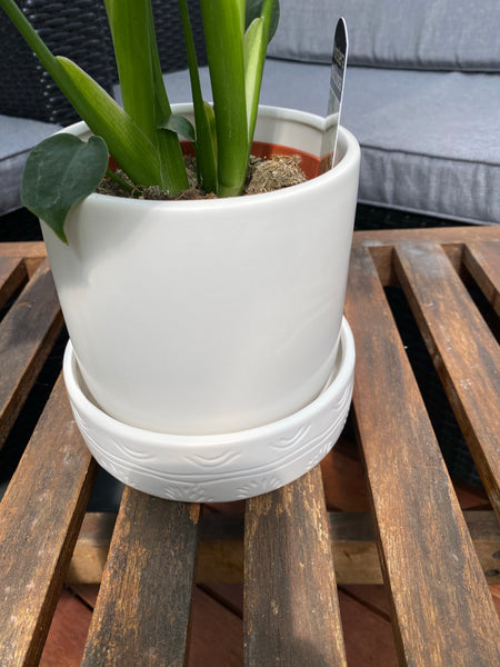 Mynx Planter with Saucer White