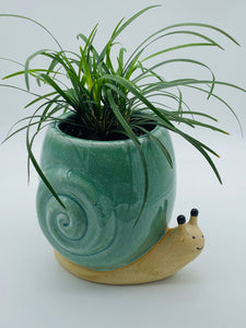 Sammy Snail Planter with Mondo Grass plant - SOLD OUT