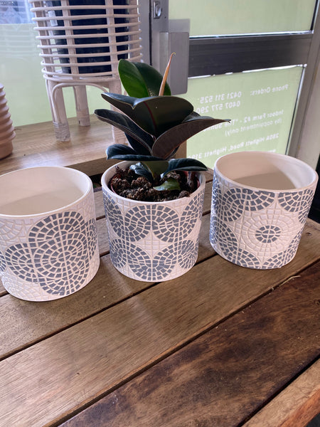 Grey/white ceramic tiled pot with plant