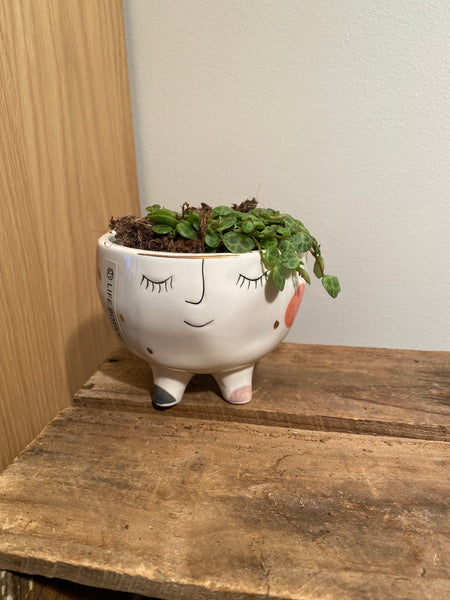 Little face planter with plant