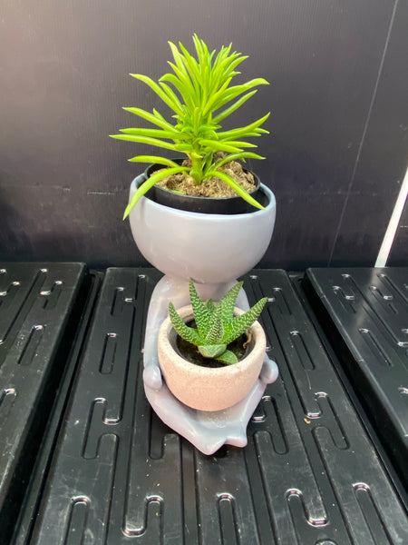 Cradle Plant Pot - Grey