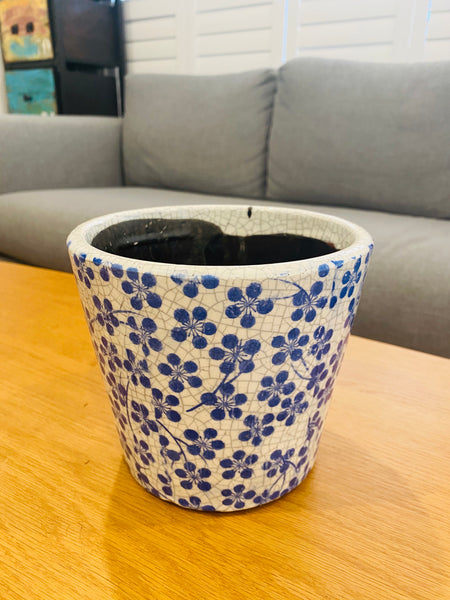 Blue/white decorative pot with plant