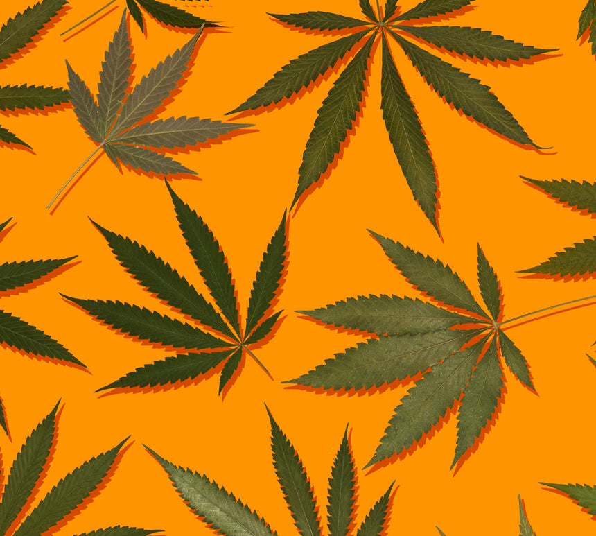Cannabis flowers