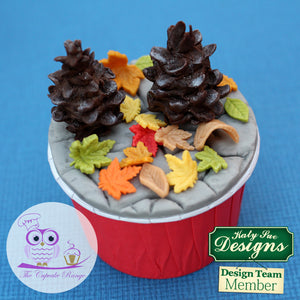 CD - An idea using the Maple Leaves Silicone Molds product