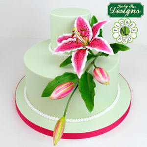 CD - Cake Idea using the Flower Pro Lily Mold and Veiner