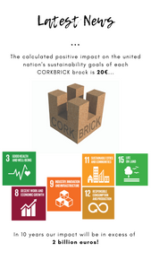 CORKBRICK - SUSTAINABLE DEVELOPMENT GOALS