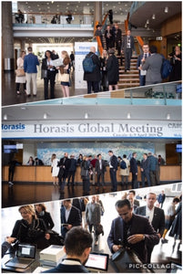 Horasis Global Meeting 2019 - Follow Up