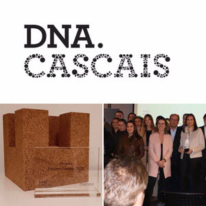 Presentation of the new companies supported by DNA Cascais 2018
