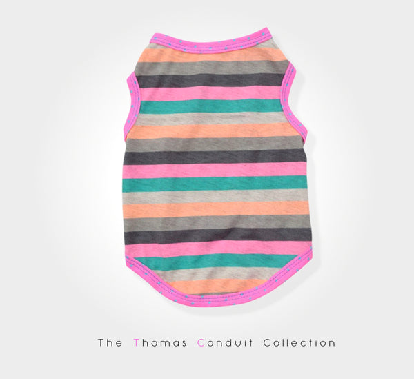 Colorful singlet with stripes for small to medium size dogs