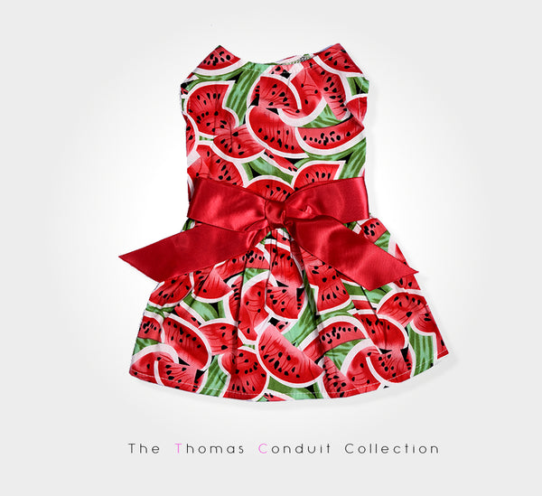 Pretty summer dress with watermelon print for small to medium size dogs