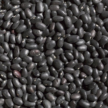 Black Turtle Bean