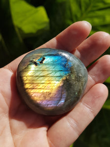 Labradorite crystal in hand