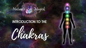 Introduction to the Chakra System