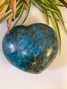 Blue Apatite large heart 777g