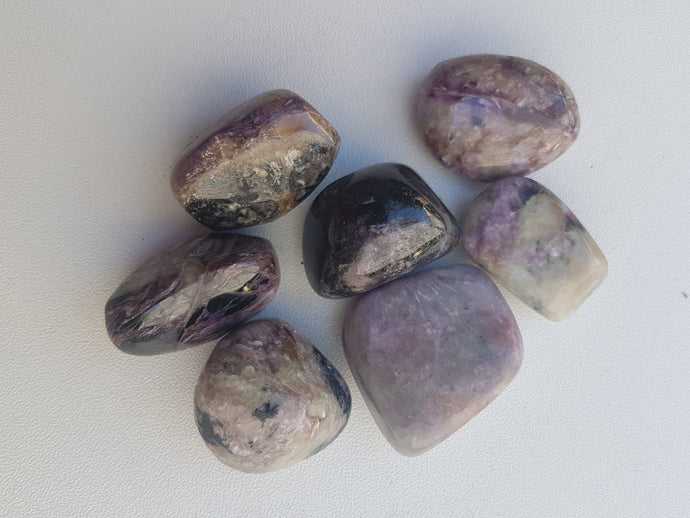 Tumbled Stone - Charoite - Nature's Magick