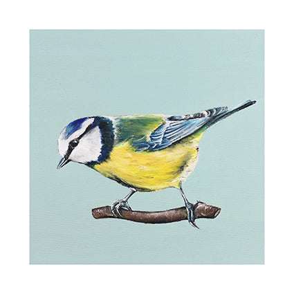 Dollybird's Art - Bluetit