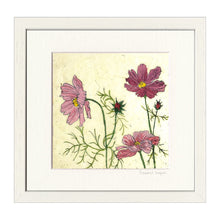 Cosmos - Mounted or Framed Print
