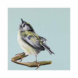 Dollybird's Art - Goldcrest