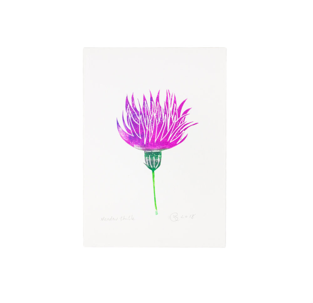 Meadow Thistle Print