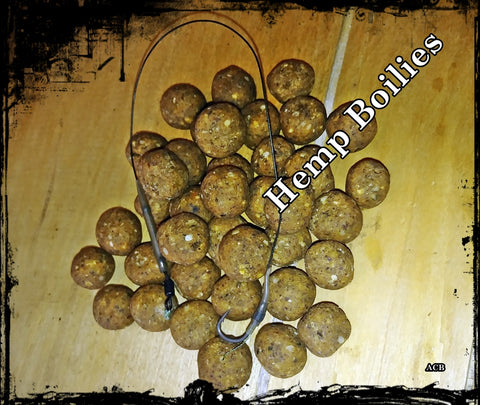 Hemp Obession Carp Fishing Boilie-Carp Fishing Boilies
