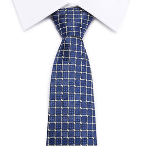 Blue Checkered Silk Tie