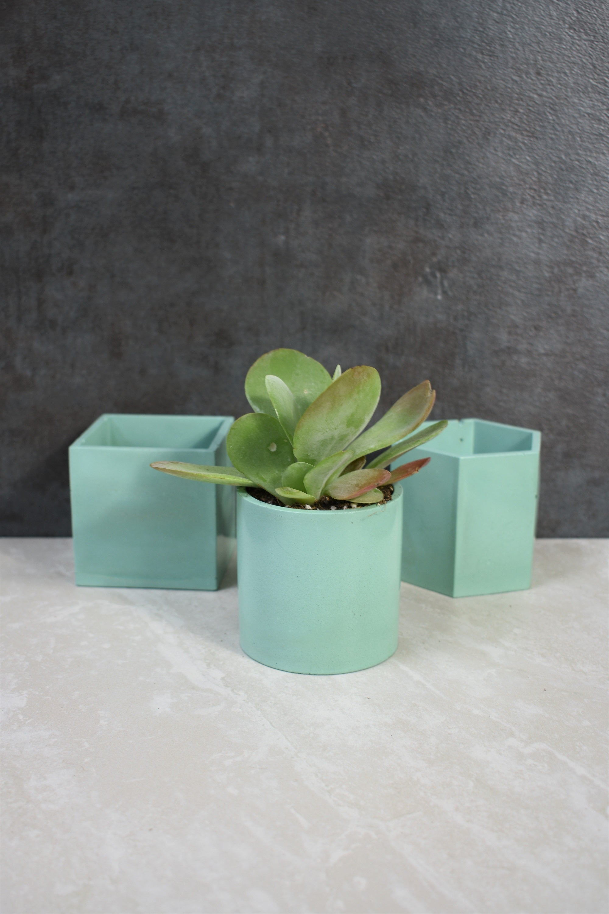 Mint Green Concrete Planter