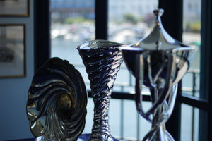 Henley Royal Regatta New Trophies Unveiling