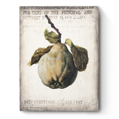 Sid Dickens Ancient Pear