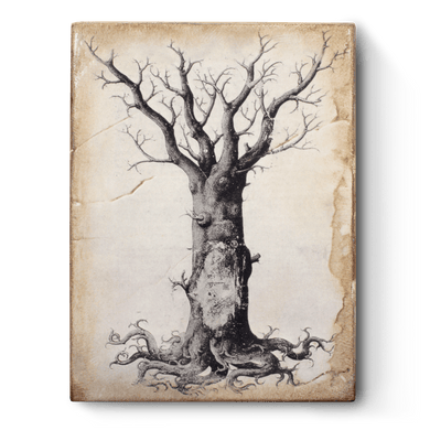 Sid Dickens Medieval Tree of Life