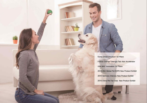 BallReady : Smart Pet Care Product